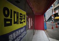 Hàn Quốc: Một em bé sơ sinh làm đại diện cho doanh nghiệp bất động sản với mức lương 80 triệu won/năm