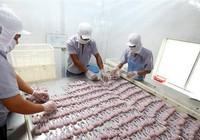 Phát hiện nhiều lô hàng nông, thủy sản Việt Nam vi phạm chất cấm của EU