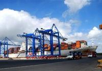 9 tháng đầu năm, Cảng Rau quả (VGP) báo lãi 10,3 tỷ, tăng 13,7 lần
