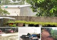 Quảng Ngãi: Mưa dữ dội kéo dài, phố ngập núi sạt nước sông đang dâng nhanh