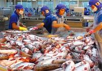 9 tháng xuất khẩu cá tra đạt hơn 1 tỷ USD