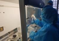Phú Yên được phép khẳng định các trường hợp SARS-CoV-2 dương tính