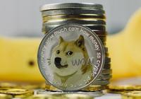 Dogecoin tăng giá 25.000% trong 6 tháng qua: một hiện tượng không thể tin được