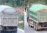 Vì lợi nhuận xe quá tải tái diễn tại nhiều tuyến quốc lộ