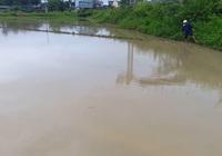 Hà Tĩnh: Sau trận mưa lớn, nhiều diện tích lúa hè thu chìm trong biển nước