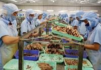 Phú Yên: 5 doanh nghiệp được vay vốn trả lương ngừng việc cho 478 lao động