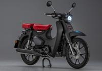 Honda Super Cub 125 2022 sẽ có những thay đổi gì mới?