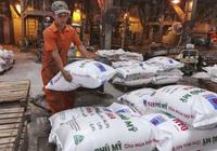 Mảng hóa chất tăng trưởng vượt bậc, chiếm 20% lợi nhuận của Đạm Phú Mỹ