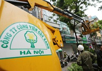 Liên tiếp trúng nhiều gói thầu khủng, Công viên cây xanh Hà Nội làm ăn ra sao?