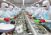 """Chỉ có 30% các doanh nghiệp thủy sản đủ điều kiện sản xuất """"3 tại chỗ"""", chi phí tăng vọt"""
