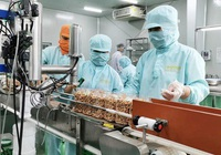 Khử trùng Việt Nam (VFG) tạm ứng chia cổ tức tiền mặt tỷ lệ 10%