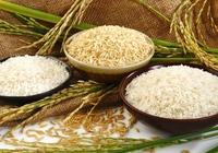 """Trung Quốc trở thành thị trường lớn thứ 2 """"ăn"""" gạo Việt Nam"""