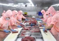 Phú Yên: Nhanh chóng gỡ khó để phục hồi phát triển doanh nghiệp