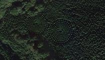"""Mê đắm """"khu rừng ngoài hành tinh"""" ở Nhật Bản"""