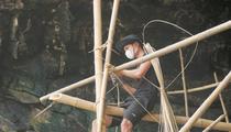Quảng Nam: Sống đời cheo leo vách núi chăm chim tiền tỷ ở biển Cù Lao Chàm