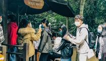 Du lịch Tết Nguyên đán: Quảng Bình, Hà Giang, ế ẩm giảm sâu