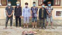 Quảng Bình: Công an huyện Minh Hoá bắt Hồ Ly cùng 5 kẻ trộm, chặt 4 chân bò của nông dân làm mồi nhậu