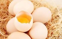 """Giá trứng tăng 80%, Nhật Bản và Châu Âu đứng trước """"cuộc khủng hoảng trứng gà"""" trầm trọng nhất chưa từng có trong lịch sử"""
