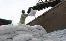 Giá gạo Việt Nam tăng cao trong hai tháng rưỡi qua