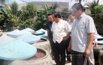 Thiếu nguyên liệu trầm trọng, làng nghề nước mắm truyền thống Phan Thiết lao đao