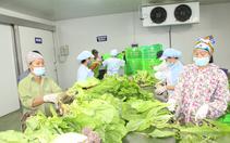 Cơm ăn, áo mặc, nơi ở và những giải pháp giữ chân người lao động