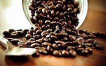 Giá cà phê đảo chiều giảm sâu, xuất khẩu cà phê giảm 5 tháng liên tiếp