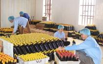 Nước mắm Ninh Cơ đạt OCOP 4 sao đầu tiên ở Nam Định