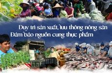 Duy trì sản xuất, lưu thông nông sản, đảm bảo nguồn cung thực phẩm trước bối cảnh dịch bệnh