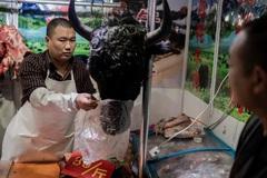 Trung Quốc tiếp tục ra lệnh cấm buôn bán động vật hoang dã