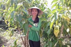 Quảng Nam: Hơn 23 tỷ đồng hỗ trợ các dự án khởi nghiệp sáng tạo