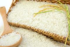 Giá gạo xuất khẩu liên tục giảm nhưng vẫn cao hơn gạo Thái