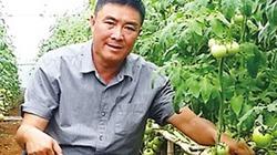 Nông dân trồng rau thu trăm tỷ