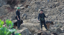 Sạt lở đất Hòa Bình: Chó nghiệp vụ bới đống đổ nát tìm thi thể người mất tích