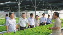 """Quảng Trị """"mở khóa"""" phát triển nông nghiệp công nghệ cao"""