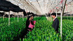 Agribank thúc đẩy tín dụng xanh cho phát triển bền vững