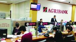 Agribank Bắc Giang gõ cửa nông nghiệp sạch