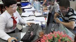 Agribank nâng cao hiệu quả, đồng hành cùng kinh tế hộ