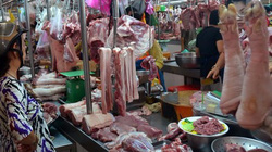 Sẽ cấm kháng sinh trong thức ăn chăn nuôi