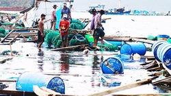 Cần nghiên cứu cải tiến lồng bè nuôi thủy sản trước hiểm họa thiên tai