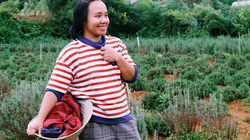 Cô thạc sĩ Sài thành bỏ phố lên rừng trồng hoa oải hương
