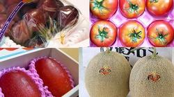 Hám trái cây lạ có giá đắt như vàng, nhiều người dính quả đắng