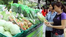 Nghịch lý tiêu thụ nông sản
