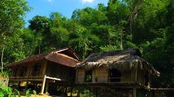 Du lịch bản Thái trong rừng trúc ở Thanh Hóa