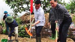 Xi măng Tân Quang sự lựa chọn ưu việt cho những cung đường nông thôn mới