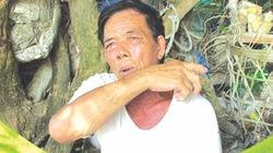 Lão ngư kể về những ngày câu cá mập ở Phú Quý