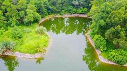 """Vườn thực vật Hà Nội với nhiều loài cây quý đang bị """"bỏ rơi"""""""