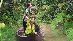 Tour HOT cuối tuần về miệt vườn hái trái cây, ăn đặc sản quê