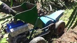 Clip: Máy băm dây thanh long tự chế của nông dân Bình Thuận