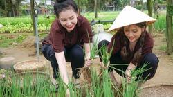 Hai người đẹp mặc áo bà ba, trải nghiệm trồng rau ở ngoại ô Hội An