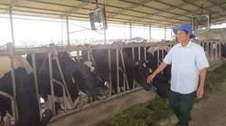 Đồng vốn Agribank điểm tựa cho nông nghiệp hàng hóa ở Hà Nam